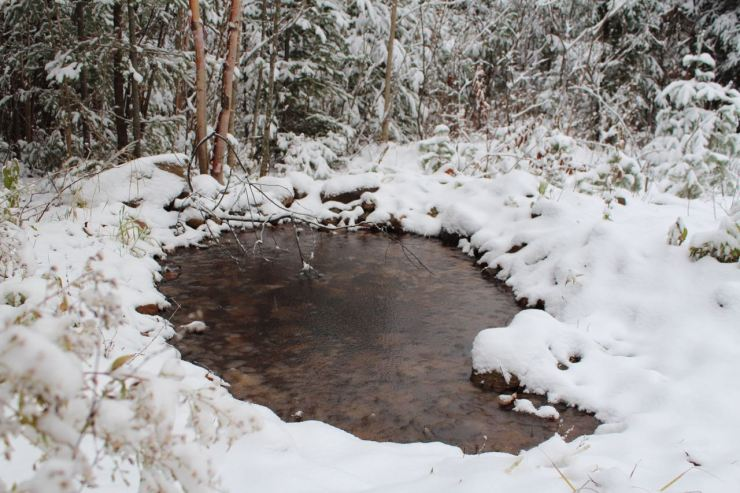 The pond is now frozen, but clearly discernible with snow around it
